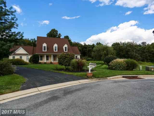 6 Locksley Court, Phoenix, MD 21131 (#BC10047949) :: Town & Country Real Estate