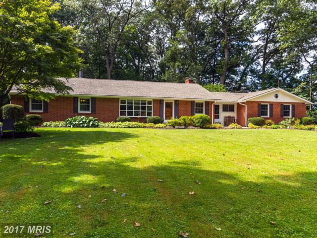 21300 Middletown Road, Freeland, MD 21053 (#BC10051340) :: Pearson Smith Realty