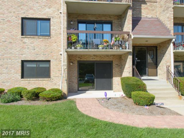 2 Bristol Hill Court A-1, Baltimore, MD 21228 (#BC10051484) :: LoCoMusings
