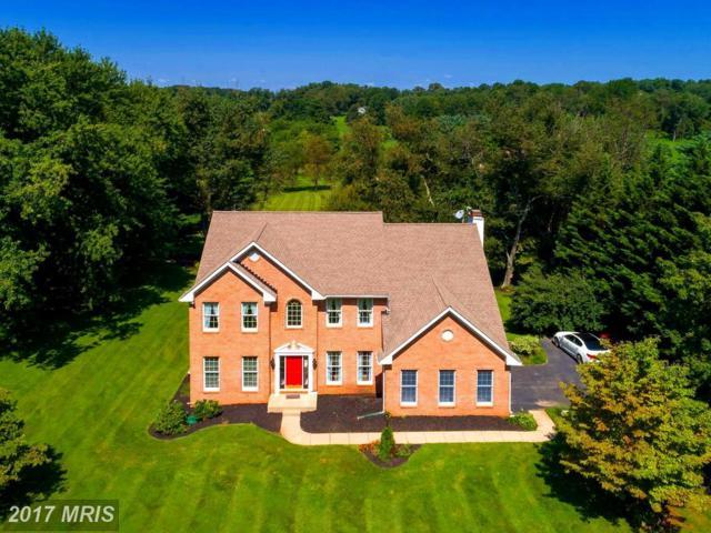 15918 Irish Avenue, Monkton, MD 21111 (#BC10053498) :: Town & Country Real Estate