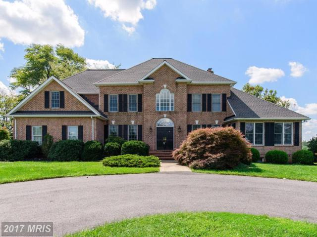 15 Lauren Knoll Court, Baldwin, MD 21013 (#BC10053586) :: Town & Country Real Estate
