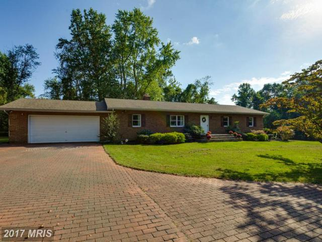 11411 Notchcliff Road, Glen Arm, MD 21057 (#BC10054618) :: LoCoMusings