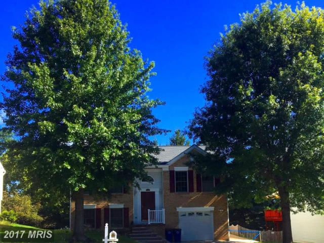 1319 Kingsbury Road, Owings Mills, MD 21117 (#BC10059526) :: Pearson Smith Realty