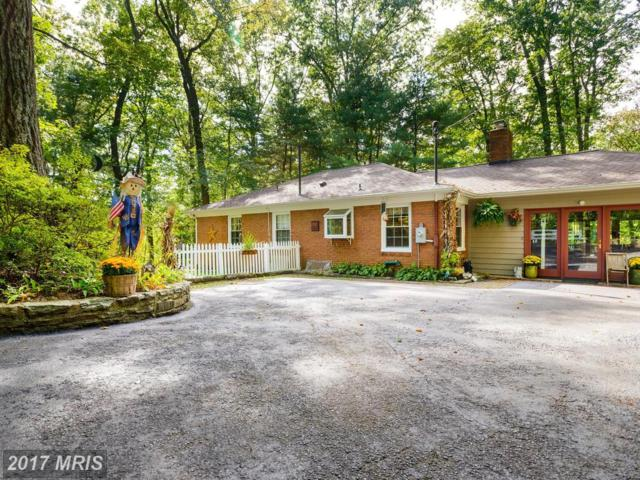 11967 Harford Road, Glen Arm, MD 21057 (#BC10064431) :: Pearson Smith Realty