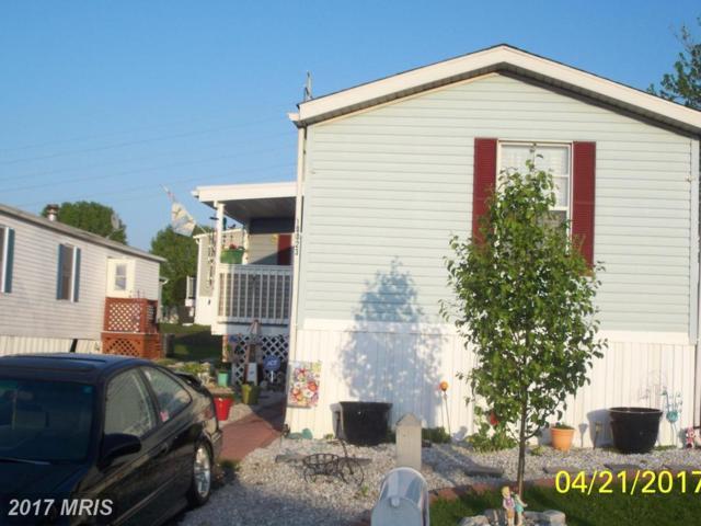 10023 Crane Lane, Baltimore, MD 21220 (#BC10065230) :: LoCoMusings