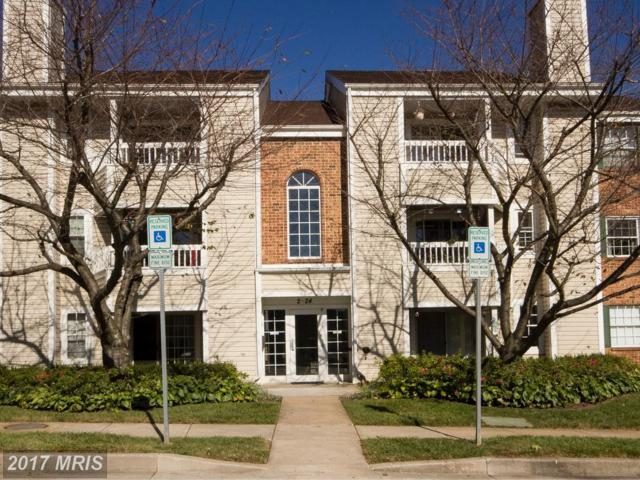 2 Marsham Court #2, Reisterstown, MD 21136 (#BC10072171) :: LoCoMusings