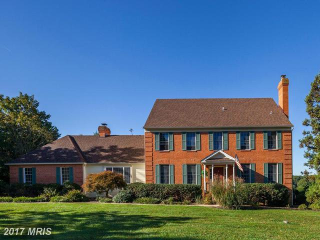 1517 Heather Hill Lane, Cockeysville, MD 21030 (#BC10074304) :: LoCoMusings