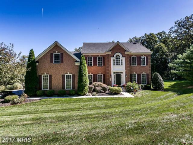 304 Stable View Court, Parkton, MD 21120 (#BC10074843) :: LoCoMusings