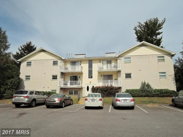 12 Warren Lodge Court 2-C, Hunt Valley, MD 21030 (#BC10076633) :: The MD Home Team