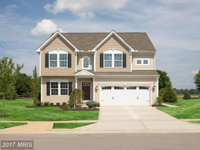 914 Long Manor Drive, Middle River, MD 21220 (#BC10078089) :: The Dailey Group