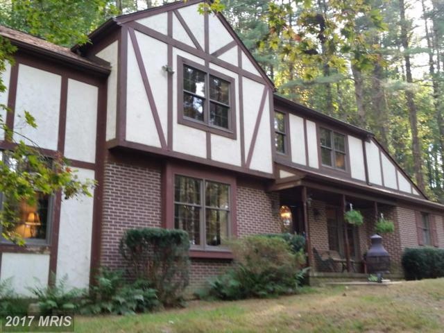 14221 Phoenix Road, Phoenix, MD 21131 (#BC10081408) :: Town & Country Real Estate