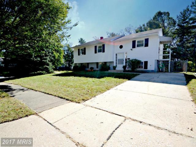 231 Candytuft Road, Reisterstown, MD 21136 (#BC10084510) :: Network Realty Group