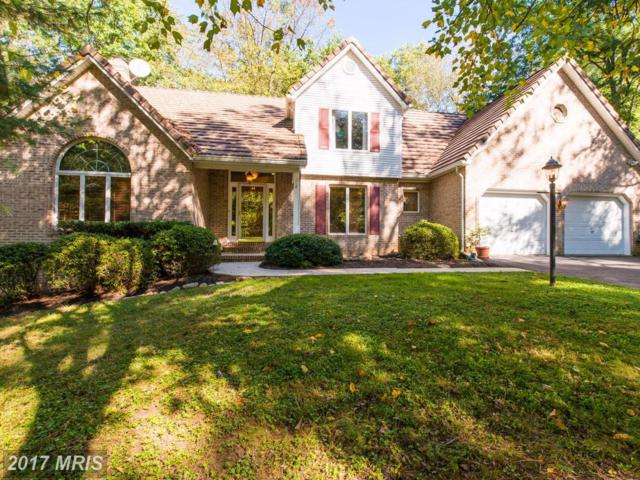 10208 Harvest Fields Drive, Woodstock, MD 21163 (#BC10085704) :: Pearson Smith Realty