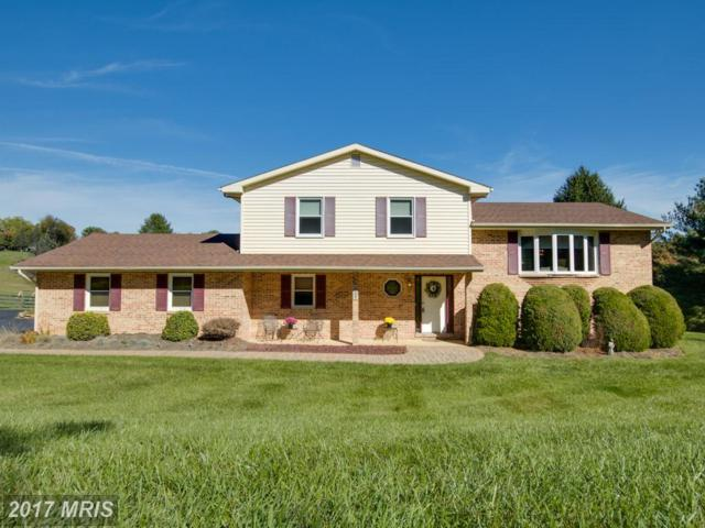 19105 Middletown Road, Parkton, MD 21120 (#BC10093118) :: The Lobas Group | Keller Williams