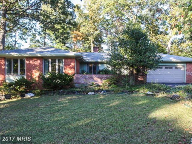 2102 Fernglen Way, Baltimore, MD 21228 (#BC10095416) :: Pearson Smith Realty