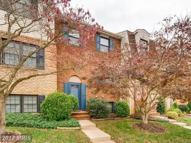 23 Theo Lane, Towson, MD 21204 (#BC10103615) :: The MD Home Team