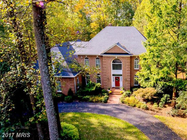 5 Chilhowie Court, Cockeysville, MD 21030 (#BC10103903) :: The MD Home Team