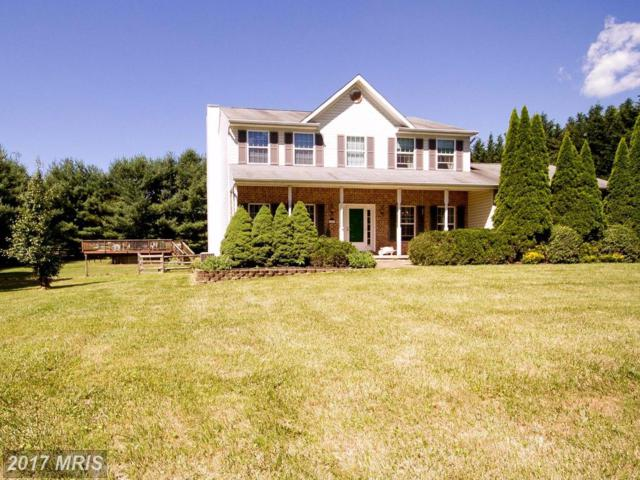 14514 Misty Valley Road, Phoenix, MD 21131 (#BC10106378) :: Pearson Smith Realty