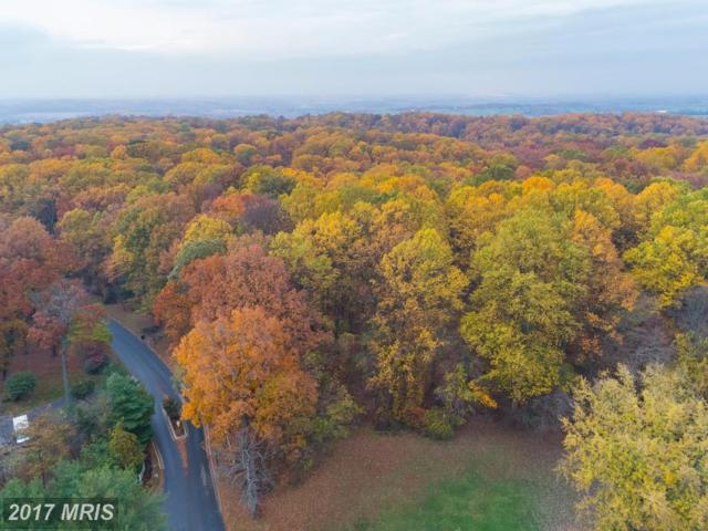 Timber Grove Road, Reisterstown, MD 21136 (#BC10108356) :: Pearson Smith Realty