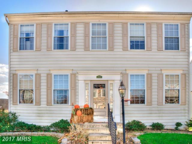 1333 Canberra Drive, Essex, MD 21221 (#BC10109179) :: Pearson Smith Realty