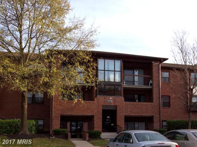 19 Juliet Lane #101, Baltimore, MD 21236 (#BC10109234) :: SURE Sales Group