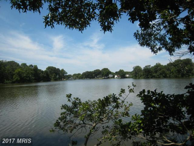 Back River Neck Road, Essex, MD 21221 (#BC10121566) :: Pearson Smith Realty