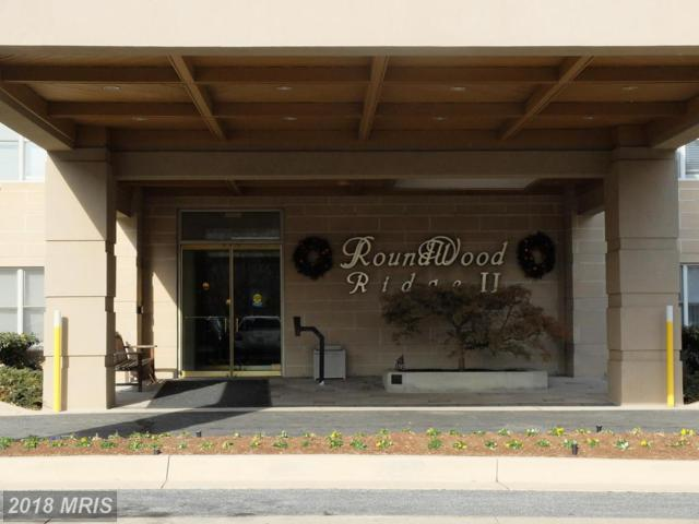 12246 Roundwood Road #807, Lutherville Timonium, MD 21093 (#BC10126664) :: Pearson Smith Realty