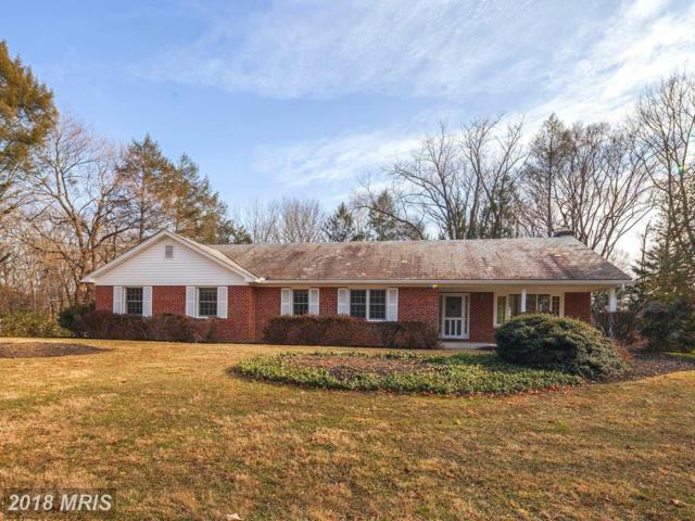 11213 Old Carriage Road, Glen Arm, MD 21057 (#BC10126888) :: The Lobas Group | Keller Williams