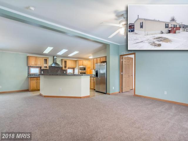 7514 Clearlake Lane, Middle River, MD 21220 (#BC10129708) :: Pearson Smith Realty