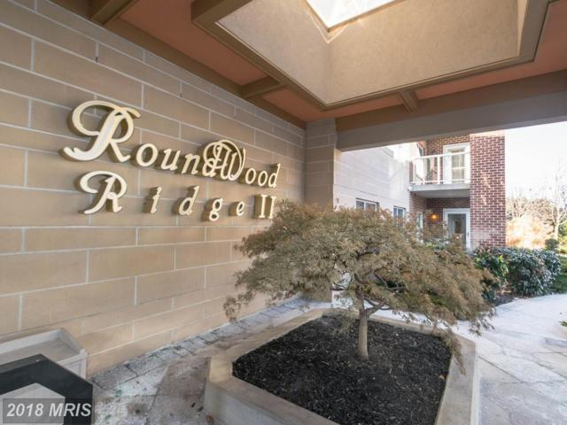 12246 Roundwood Road #403, Lutherville Timonium, MD 21093 (#BC10131112) :: Pearson Smith Realty