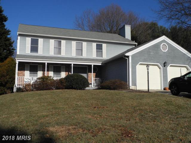 3908 Esgarth Way, Owings Mills, MD 21117 (#BC10131368) :: The MD Home Team