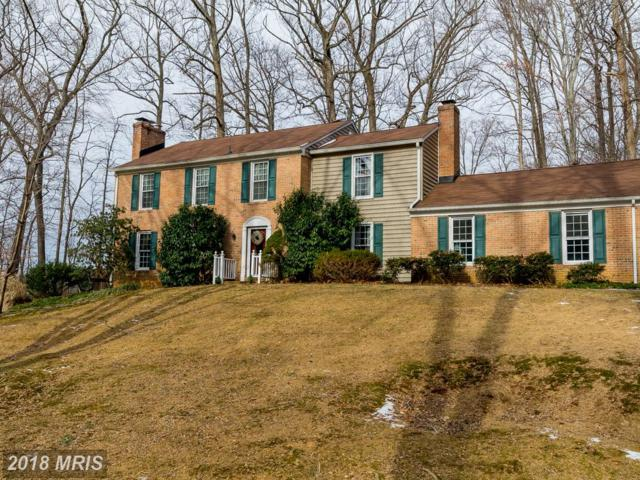 5 Crestmill Court, Phoenix, MD 21131 (#BC10131652) :: Pearson Smith Realty