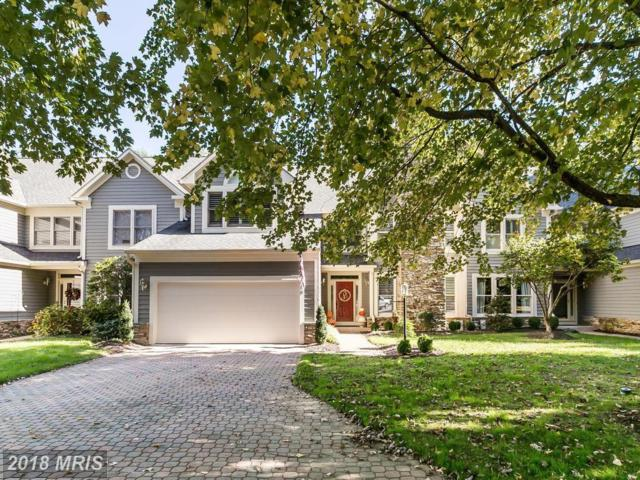 16 Spyglass Court, Lutherville Timonium, MD 21093 (#BC10134383) :: The MD Home Team