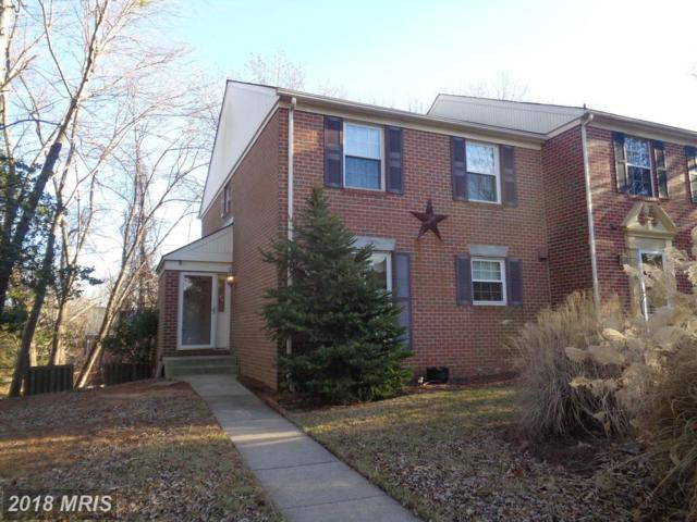 39 Castlehill Court, Lutherville Timonium, MD 21093 (#BC10134561) :: The MD Home Team