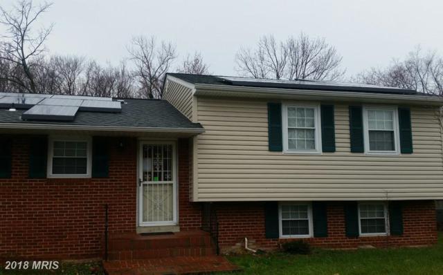 4205 Hollowspring Lane, Baltimore, MD 21236 (#BC10134574) :: Pearson Smith Realty
