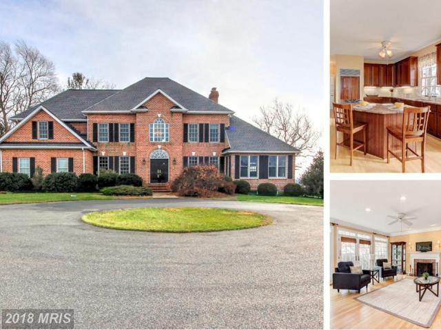 15 Lauren Knoll Court, Baldwin, MD 21013 (#BC10137198) :: Town & Country Real Estate