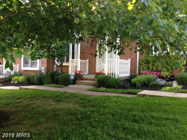 12 Iron Mill Garth Garth, Hunt Valley, MD 21030 (#BC10137340) :: Pearson Smith Realty