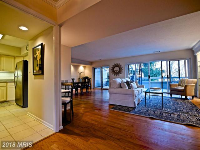 206 Deer Fox Lane, Lutherville Timonium, MD 21093 (#BC10138149) :: The Dailey Group