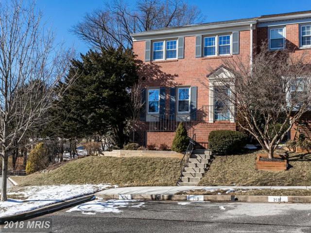 20 Wonderview Court, Lutherville Timonium, MD 21093 (#BC10138505) :: The Dailey Group
