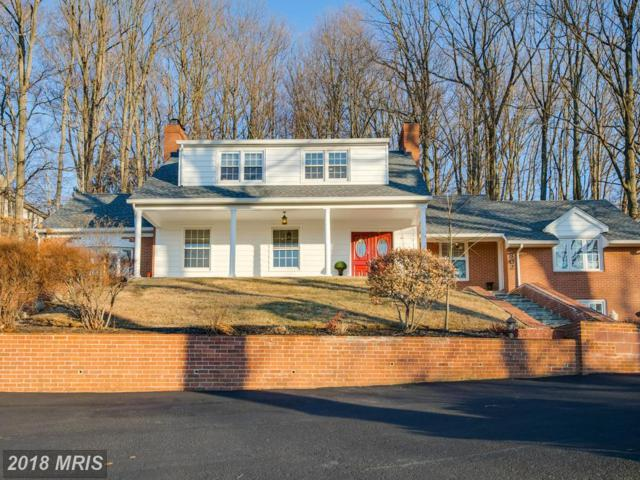 802 Stags Head Road, Towson, MD 21286 (#BC10143724) :: The Miller Team