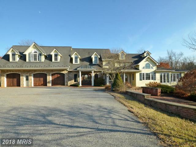 2601 Cotter Road, Manchester, MD 21102 (#BC10147391) :: The Gus Anthony Team