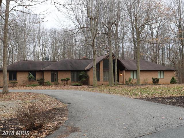 12202 Darney View Road, Kingsville, MD 21087 (#BC10158132) :: Tessier Real Estate