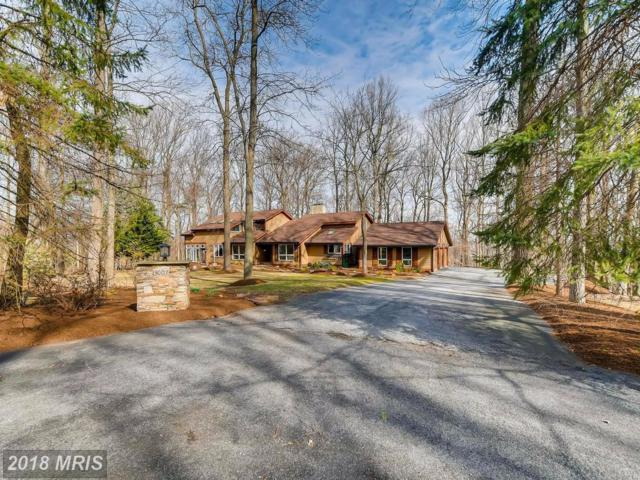 13007 Jerome Jay Drive, Cockeysville, MD 21030 (#BC10170444) :: The MD Home Team