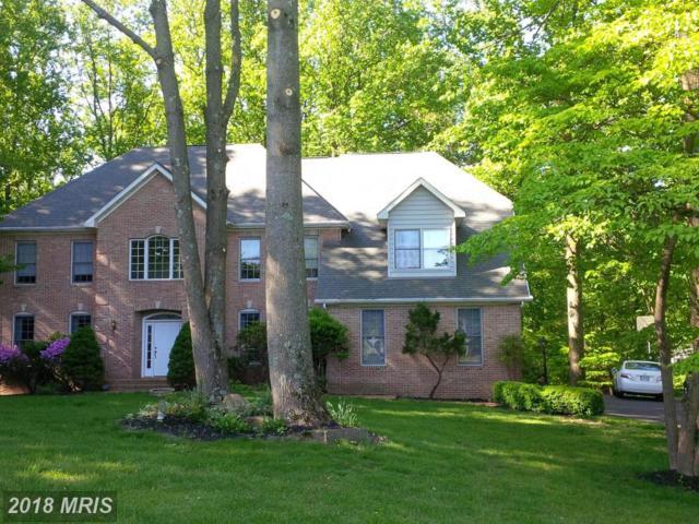 11501 Holt Road, Kingsville, MD 21087 (#BC10194559) :: Tessier Real Estate