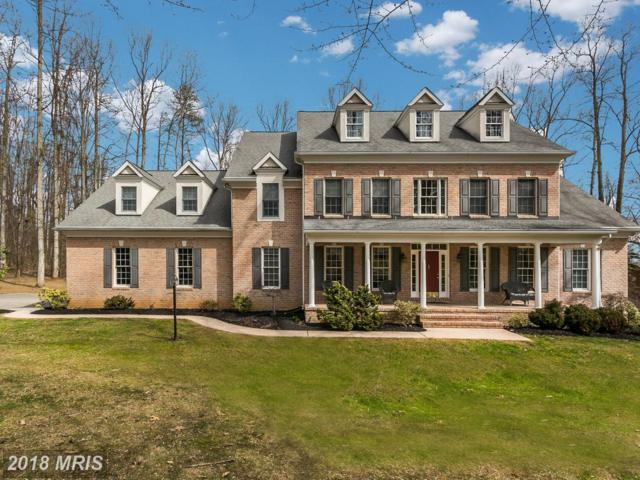 4 Middle Woods Court, Parkton, MD 21120 (#BC10206515) :: Advance Realty Bel Air, Inc