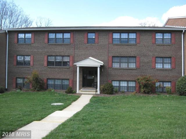 24 Alanbrooke Court 24C, Towson, MD 21204 (#BC10210463) :: The Miller Team