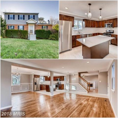 3935 Nemo Road, Randallstown, MD 21133 (#BC10216939) :: CR of Maryland