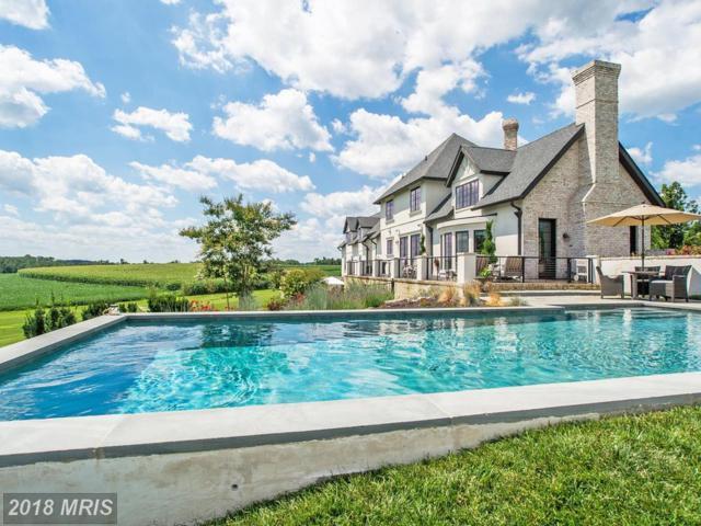15740 Dover Road, Upperco, MD 21155 (#BC10219521) :: Keller Williams Pat Hiban Real Estate Group