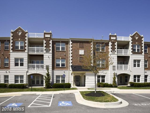 310 Paladium Court #302, Owings Mills, MD 21117 (#BC10221557) :: Dart Homes