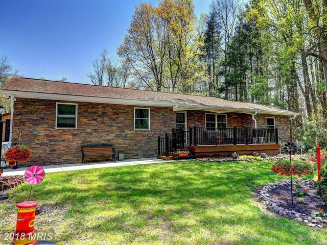13015 Bottom Road, Hydes, MD 21082 (#BC10228432) :: Town & Country Real Estate